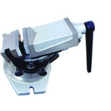 Machine Vises-Declinable Machine Vise